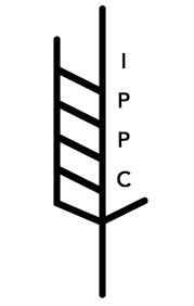 nimp15.png